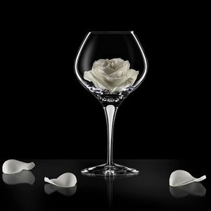 Intermezzo Satin Bouquet - Orrefors Vinprovarglas