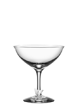 Symbols Champagne Coupe Butterfly 2-pack