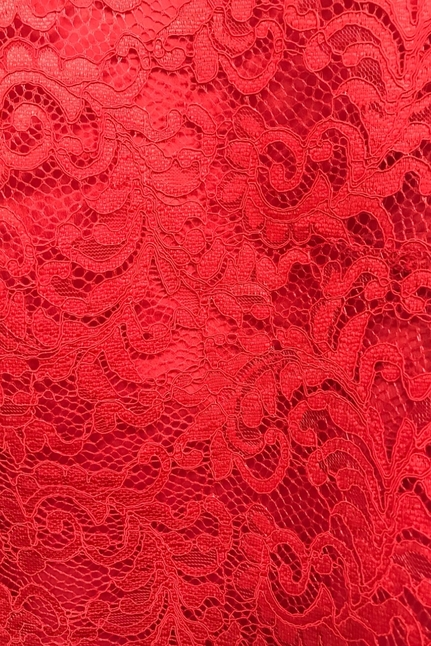 Janice Top Corded Lace