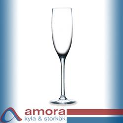 Lilla Champagneglas, Edition, 15cl, 6st/fp