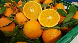 Navelina apelsiner ca 7 kg