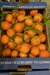 Clementiner EKO  1 kg