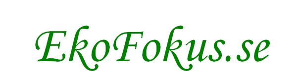 EkoFokus.se