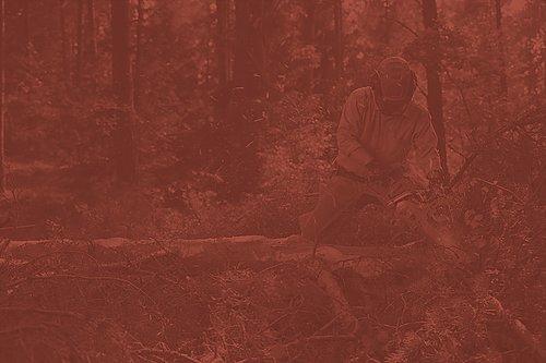 Skogsverktyg för maskinell och manuell avverkning