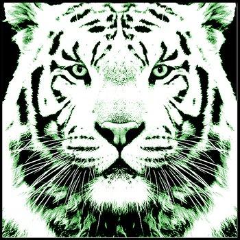 Svart vit tiger grön - poster