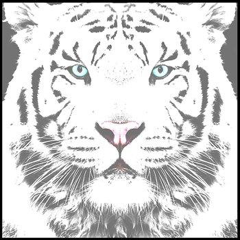 Svart vit tiger ljus grå skuggad - poster