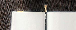 Blackwing Palomino