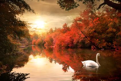 Natur och Landskap
