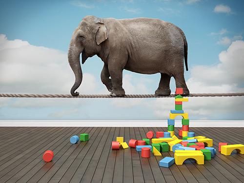 Barnrum med fototapet av en elefant