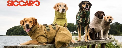 Världens bästa badrock för hund Absorberar 90% vatten på 15 min*