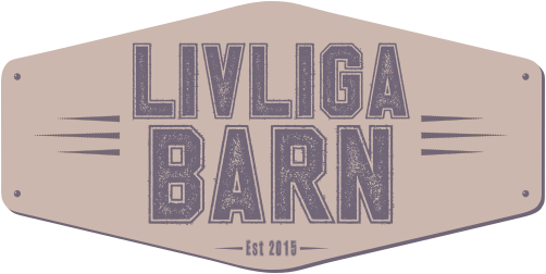 Livliga Barn